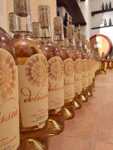 #cantinacanneddu #zibbo #delissia #wine #mamoiada #sardegna