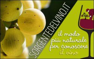 #cantinacanneddu #zibbo #delissia #rosato #canonau #granatza #redwine #whitewine #rosè #mamoiada #mamojà #sardegna #sardinianwine