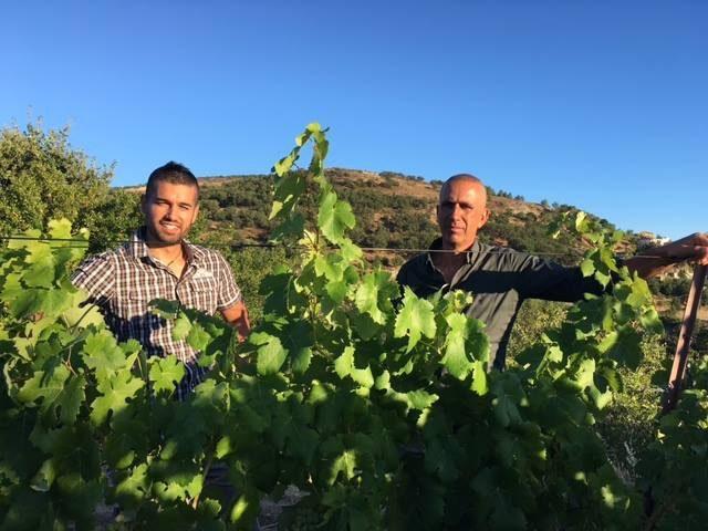#cantinacanneddu #cannonau #granazza #mamoiada #organic #localwines #familywine #winexperience #emotions #grenache #vinotinto #redwine #whitewine #mamojà #sardegna #sardinianwines #italy